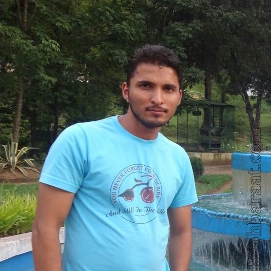Ashok ( INV_4579 )